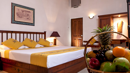 Amaya-lake-club-lodge-villa-Dambulla