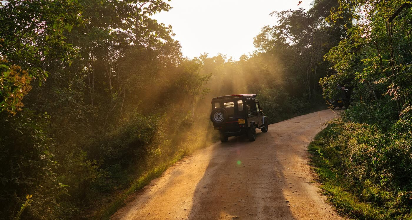 Dambulla-jeep-safari