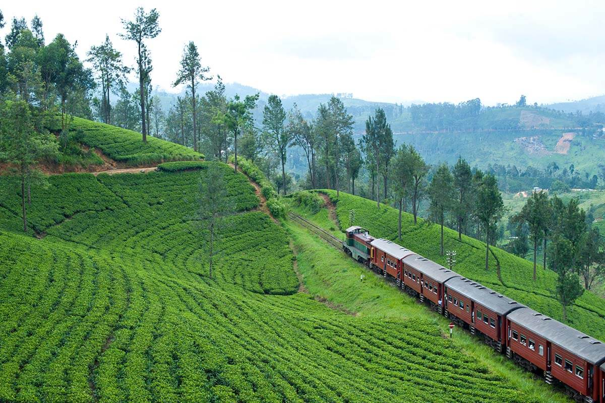 Bogawantalawa - Train Rides in Nuwara Eliya