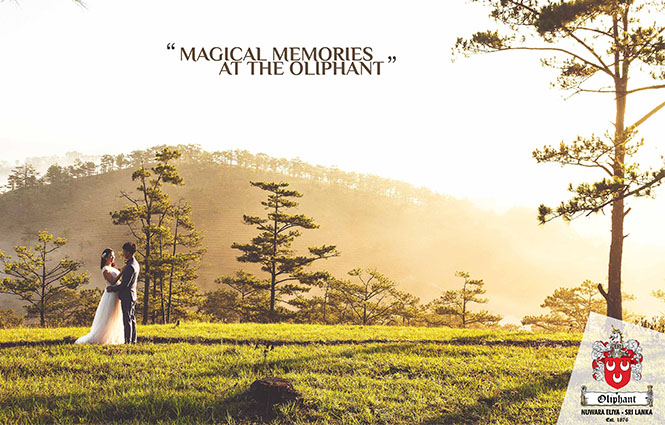 Magical Memories at The Oliphant